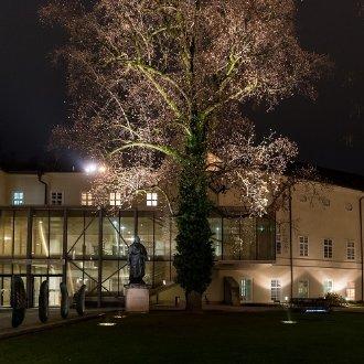 Bildergalerie 2018: Die Große Aula in Salzburg © Albert Moser